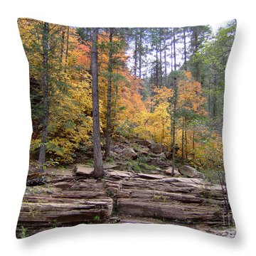 Fall Colors 6463-02 Throw Pillow