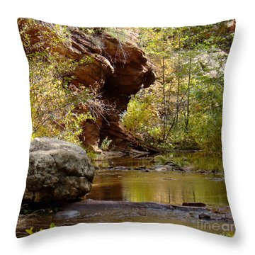 Fall Colors 6472-02 Throw Pillow