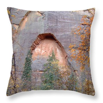 Fall Colors 6482 Throw Pillow
