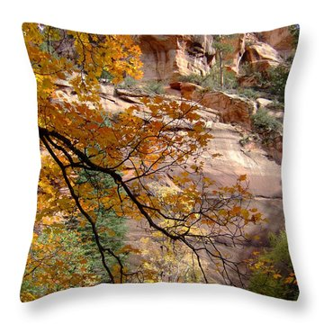 Fall Colors 6497 Throw Pillow