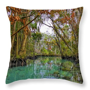 Fall Colors Along Three Sisters Spring Run Throw Pillow