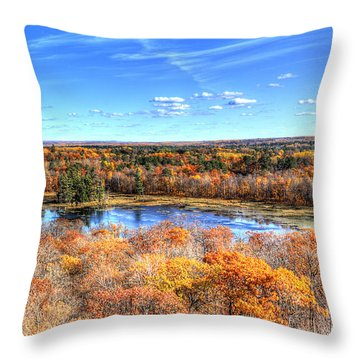 Fall Colors At Itasca State Park Throw Pillow