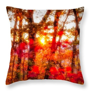Fall Colors Throw Pillow by David Cote