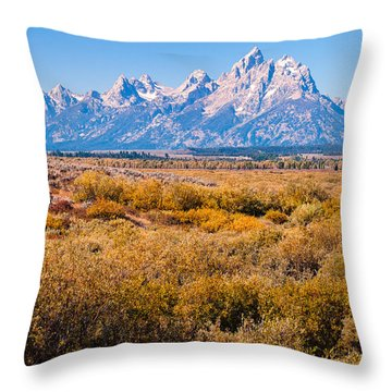 Fall Colors In The Tetons   Throw Pillow