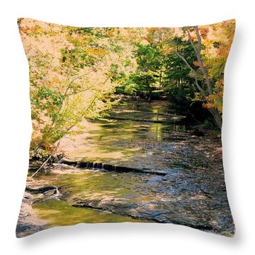 Fall Colors Throw Pillow by Kathleen Struckle