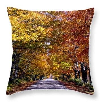 Fall Colors Near Sister Bay Throw Pillow