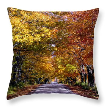 Fall Colors Near Sister Bay Throw Pillow