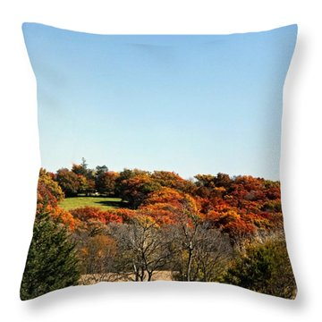 Fall Colors Of Iowa Series 1 Throw Pillow by Yumi Johnson