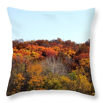 Fall Colors Of Iowa Series 2 Throw Pillow