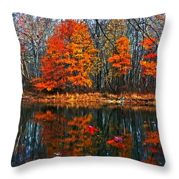 Fall Colors On Small Pond Throw Pillow