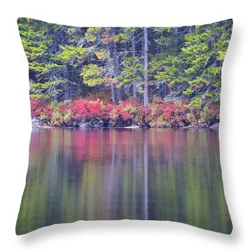 Fall Colors Reflecting Off The Water Throw Pillow