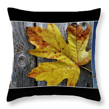 Fall Colors Triptych Throw Pillow