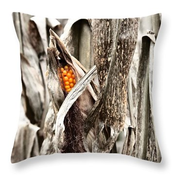 Fall Corn Throw Pillow