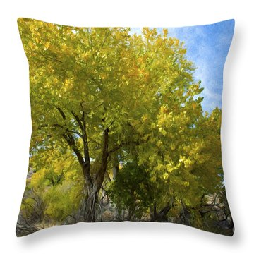 Fall Cottonwoods Throw Pillow by Dianne Phelps