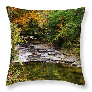 Fall Creek Throw Pillow by Christina Rollo
