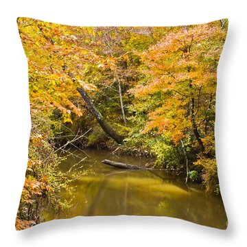 Fall Creek Foliage Throw Pillow