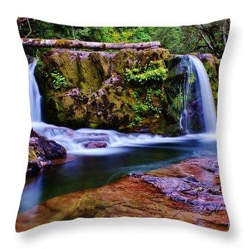 Fall Creek Oregon 3 Throw Pillow