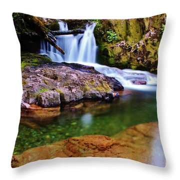 Fall Creek Oregon Throw Pillow by Michael Cross