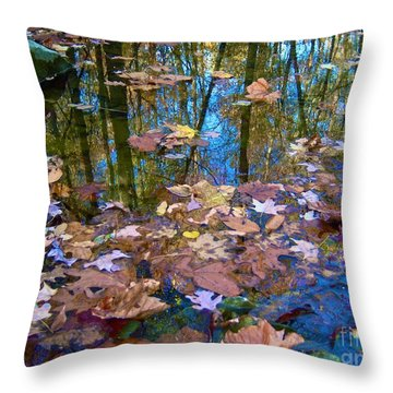 Fall Creek Throw Pillow by Pamela Clements