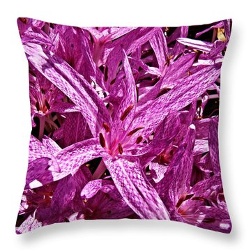 Throw Pillow featuring the photograph Fall Crocus by Nick Kloepping