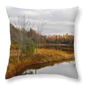 Fall Curves Throw Pillow