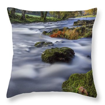 Fall Dreams Throw Pillow by Ian Mitchell