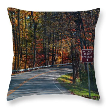 Fall Drive In Tennessee  1 Throw Pillow