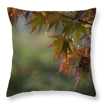 Fall Fantasy Throw Pillow by Jane Eleanor Nicholas
