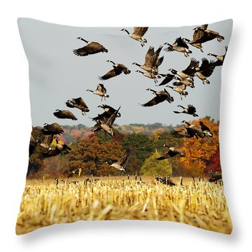 Fall Feast Throw Pillow