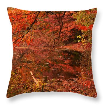 Fall Flavor Throw Pillow