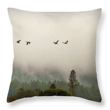 Throw Pillow featuring the photograph Fall Flight by Julia Hassett
