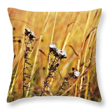 Fall Flowers Throw Pillow by Mark Russell