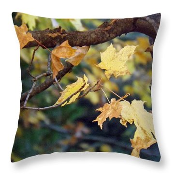 Fall Foilage Throw Pillow by Brenda Brown