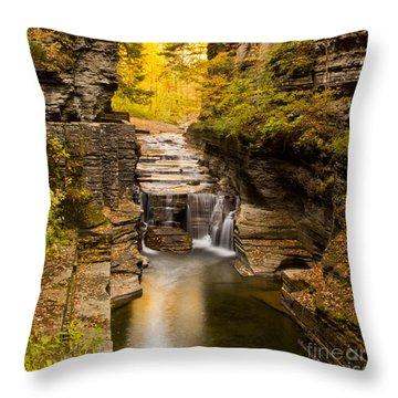 Fall Foliage At Dusk Treman Park Throw Pillow