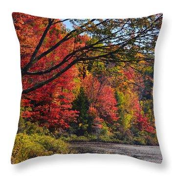 Fall Foliage At Elbow Pond Throw Pillow