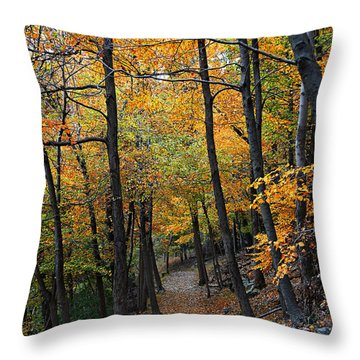 Fall Foliage Colors 03 Throw Pillow