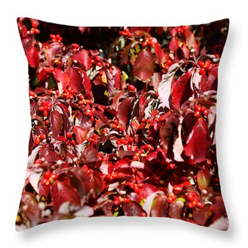Fall Foliage Colors 08 Throw Pillow