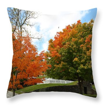 Fall Foliage Colors 09 Throw Pillow