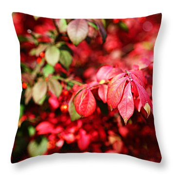 Fall Foliage Colors 10 Throw Pillow