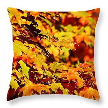 Fall Foliage Colors 13 Throw Pillow