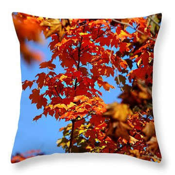 Fall Foliage Colors 15 Throw Pillow