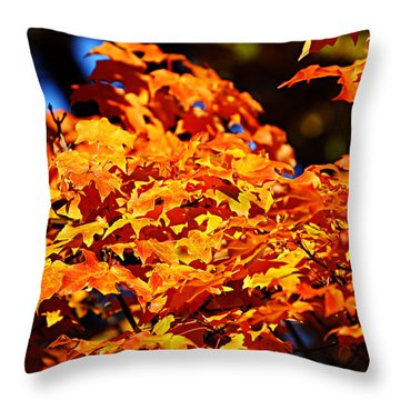Fall Foliage Colors 16 Throw Pillow