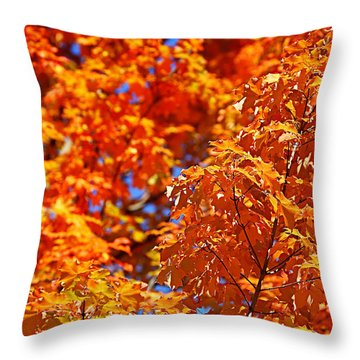 Fall Foliage Colors 17 Throw Pillow