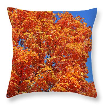 Fall Foliage Colors 18 Throw Pillow