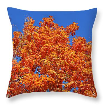 Fall Foliage Colors 19 Throw Pillow