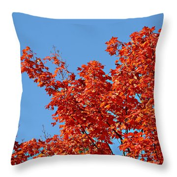 Fall Foliage Colors 20 Throw Pillow