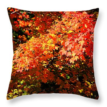 Fall Foliage Colors 21 Throw Pillow