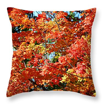 Fall Foliage Colors 22 Throw Pillow
