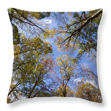 Fall Foliage - Look Up 2 Throw Pillow