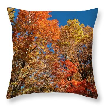 Throw Pillow featuring the photograph Fall Foliage by Patrick Shupert